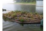 Experimental floating wetlands Experimental floating wetlands