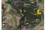 Výskyt jasoně v Milovickém lese Výskyt jasoně v Milovickém lese v roce 2006 (žlutě), 2017 (oranžově) a 2019 (červeně). Před deseti lety tu jasoň patřil k nejběžnějším motýlům. Dnes žije na poslední pasece a brzy nejspíš zmizí úplně. Zelenou čarou hranice evropsky významné lokality Milovický les, modrozelenou hranice obory a bílou hranice bloků, v nichž se těží. Fialově vytěžené plochy.