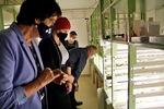 Kultivační místnosti Nové kultivační místnosti pro kontrolovaný růst roslin v podmínkách in vitro.