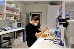 Plant Molecular Signaling laboratory Plant Molecular Signaling laboratory