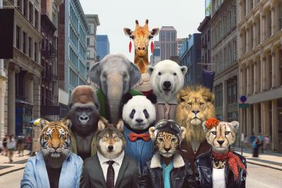 Animals in the marketing media deceive us about their survival in the wild