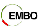 The EMBO practical course on Electron Microscopy and Stereology in Cell Biology